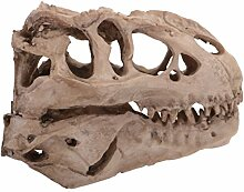 Gazechimp Dinosaurier Totenkopf Figur Modell,