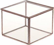 Gazechimp Glasterrarium Geometrisches Glas Schmuckschatulle Sukkulente Pflanzgefäß Haus Dekoration - M