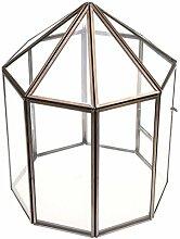 Gazechimp Glasterrarium Geometrisches Glas Sukkulente Pflanzgefäß Haus Dekoration Haus Form