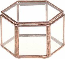Gazechimp Mini Sechseckige Glasterrarium Geometrisches Glas Schmuckschatulle Sukkulente Pflanzgefäß Haus Dekoration