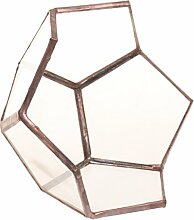 Gazechimp Offenes Lotus Glasterrarium Geometrisches Glas Sukkulente Pflanzgefäß Haus Dekoration