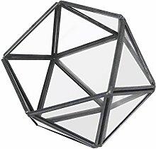 Gazechimp Unregelmäßige Glas mini Geometric Gartenhaus Glasterrarium Pflanzen Blumen Vase Box Terrarium Container , Triangle Halbkugel Form - Klar + Schwarz, 10 × 10 × 10 cm