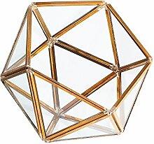 Gazechimp Unregelmäßige Glas mini Geometric Gartenhaus Glasterrarium Pflanzen Blumen Vase Box Terrarium Container , Triangle Halbkugel Form - Klar + Brass, 10 × 10 × 10 cm