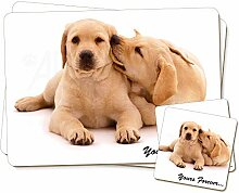 Gelb Labrador Hund 'Yours Forever' Twin
