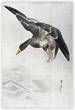 Gemälde Duck