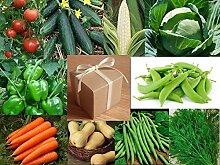 Gemüsegarten in einer Box, Samen-Set, Geschenk,