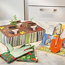 Gemüsegarten-Set Kräuter-Set Anzucht-Set Kräutertopf Küchenkräuter für Kinder