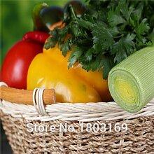 Gemüsesamen Habanero orange Paprika-Pfeffer-Samen Pflanze - 100 Stück - extrem heiß!