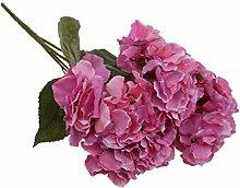 Generic Künstliche 5 Köpfe DIY Kunstseide Blume Hortensie Pflanze Hochzeit Partei Garten Dekor - Rose Rot, 7cm