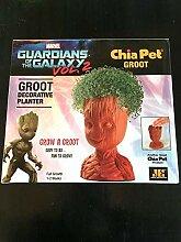 Generic Seeds: Wächter Galaxy Dekorative s Chia