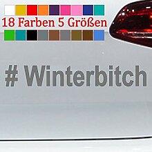 Generic # Winterbitch Aufkleber Winterauto