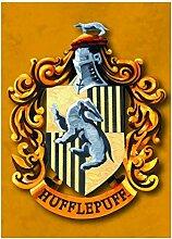 Genuine Warner Bros Harry Potter Hufflepuff Haus