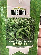 GEOPONICS Aloe variegataCacti Sukkulenten Real