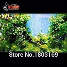GEOPONICS Gelb: 200 Aquarium Seeds/pack Samen