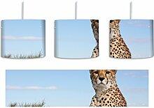 Gepard in Savanne inkl. Lampenfassung E27, Lampe