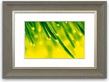 Gerahmter Fotodruck Energie einer Pflanze