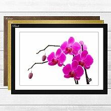 Gerahmter Fotodruck Flower Pink Orchid Big Box Art
