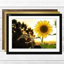 Gerahmter Fotodruck Flower The Yellow Sunflower