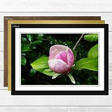 Gerahmter Fotodruck Pink Purple Flower Lotus Big