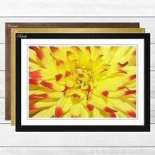 Gerahmter Fotodruck Red and Yellow Flower Big Box