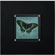 Gerahmtes Acrylbild Schmetterling