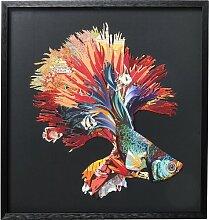 Gerahmtes Glasbild Colourful Betta Fish KARE Design
