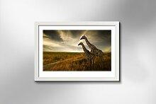 Gerahmtes Holzbild Giraffen