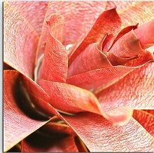 Gerahmtes Leinwandbild Nahaufnahme einer roten