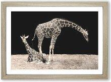 Gerahmtes MDF-Bild Zwei Giraffen