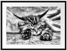 Gerahmtes Poster Baby-Katze, Rote Bettdecke