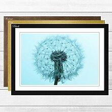 Gerahmtes Poster Flower Blue Dandelion, Fotodruck