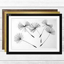 Gerahmtes Poster Flower Dandelion Seeds (1),