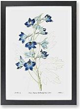 Gerahmtes Poster Rittersporn-Blüten East Urban