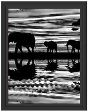 Gerahmtes Wandbild Afrika Elefant in Sonnenschein