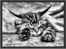 Gerahmtes Wandbild Baby-Katze, rote Bettdecke,