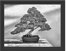 Gerahmtes Wandbild Bonsai Baum East Urban Home