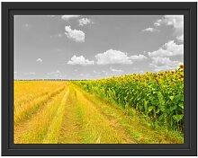 Gerahmtes Wandbild Feldweg  Sonnenblumen
