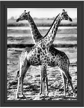 Gerahmtes Wandbild Giraffen Paar