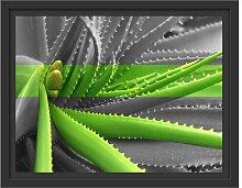 Gerahmtes Wandbild grüne Aloe Vera Pflanze East