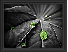Gerahmtes Wandbild Regentropfen auf Pflanze