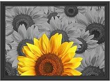 Gerahmtes Wandbild schöne Sonnenblumen