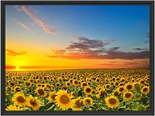 Gerahmtes Wandbild Sonnenuntergang Sonnenblumen
