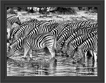 Gerahmtes Wandbild Zebras Safari Afrika East Urban