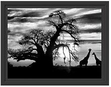 Gerahmtes Wandbild Zwei Giraffen in der Wüste