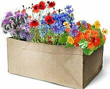 Geschenkidee Minigarten Blumensamen 50 L Jutesack zum bepflanzen 4 Samentüten Mohn, Kapuzinerkresse, Kornblume, Phacelia