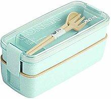 Gesundes Material 2-lagige Bento-Box Weizengras