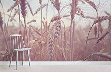 Getreide Weizenfeld Fototapete 3D Hintergrund des