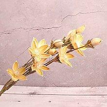 Getrocknete blumen blumenstrauß holz lotus