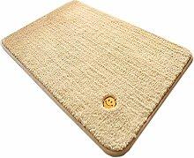 GHGMM Teppich Fußmatten, Einfach Wasseraufnahme