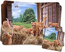 Ginger Katze und Kätzchen in Barn Twin 2x